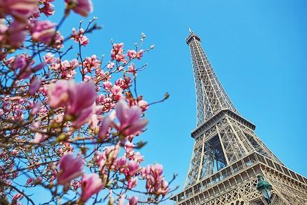 Paryż wiosną.jpg
